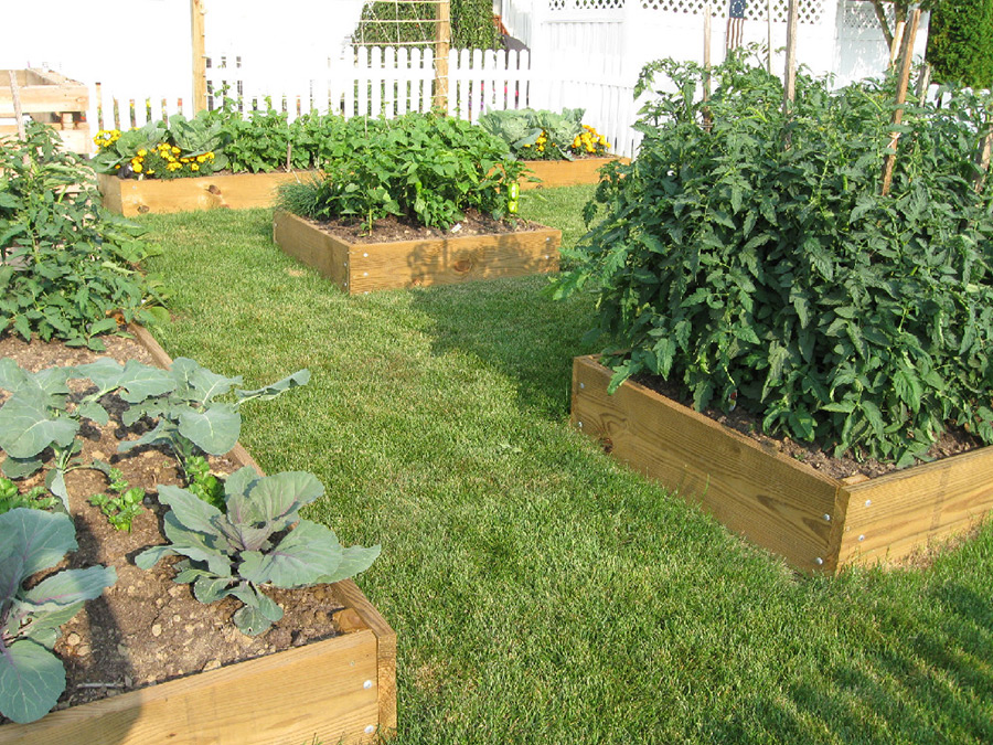backyard container gardens by ef pouly company
